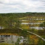 National-park-Lahemaa