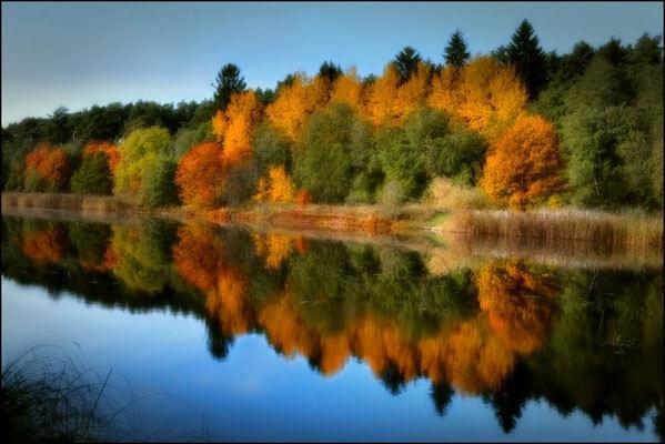 Estonian Nature & Natural Parks | Discover Estonia