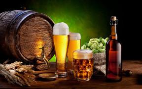 Tallinn Tour & Craft Brewery Visit